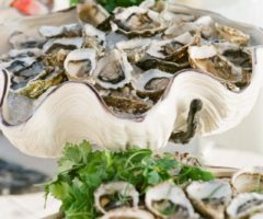 raw oyster bar